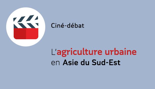 L'agriculture urbaine en Asie du sud-est