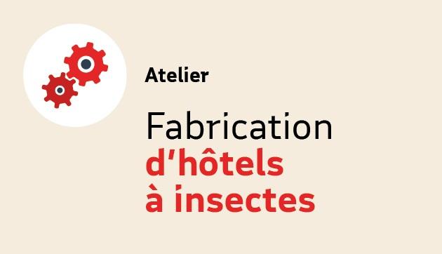Fabrication d'hôtels à insectes